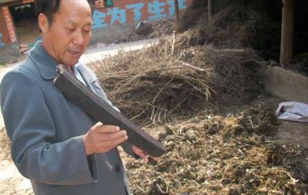 水葫芦制成炭 一位退休老人何钟瑜开木炭工厂